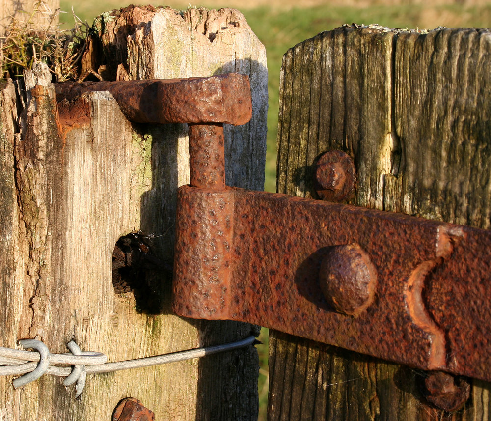 rusty gate hinge by Bob the Lomond courtesy of Flickr.jpg