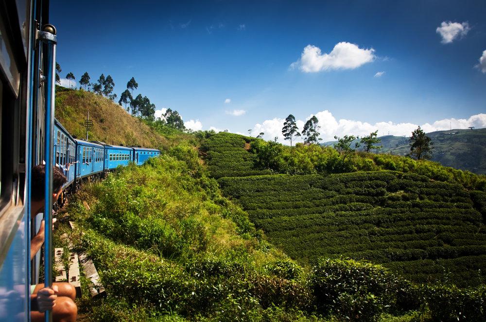 Sri Lanka - en forsmak på paradis