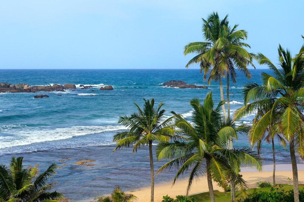 På eventyr i Sri Lanka - frodig jungel og paradisiske strender