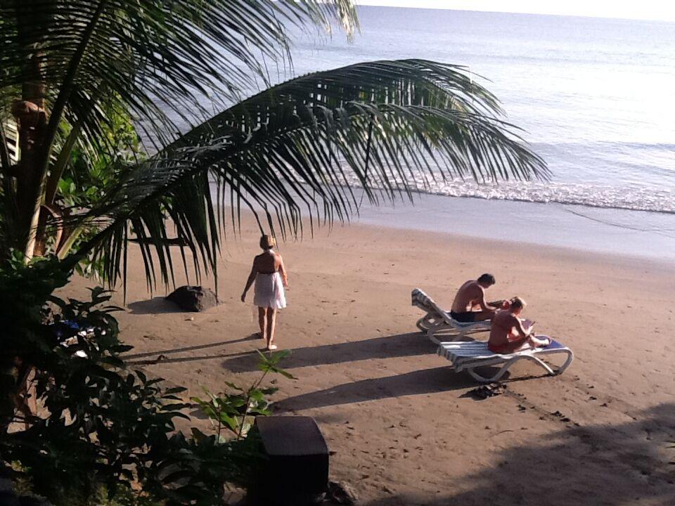 Bacolet Beach Club på Tobago er et veldig hyggelig boutique hotel der kun en trapp skiller deg fra den finkornede stranden og korallrevet like utenfor.