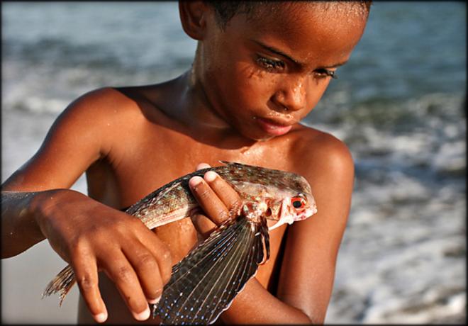 En liten gutt studerer dagens fangt på Kapp Verde