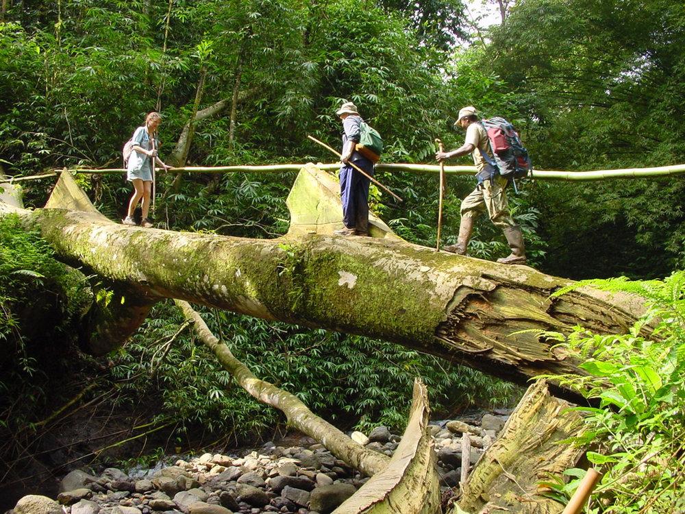 Trekking i nasjonalparken Obo på Sao Tomé