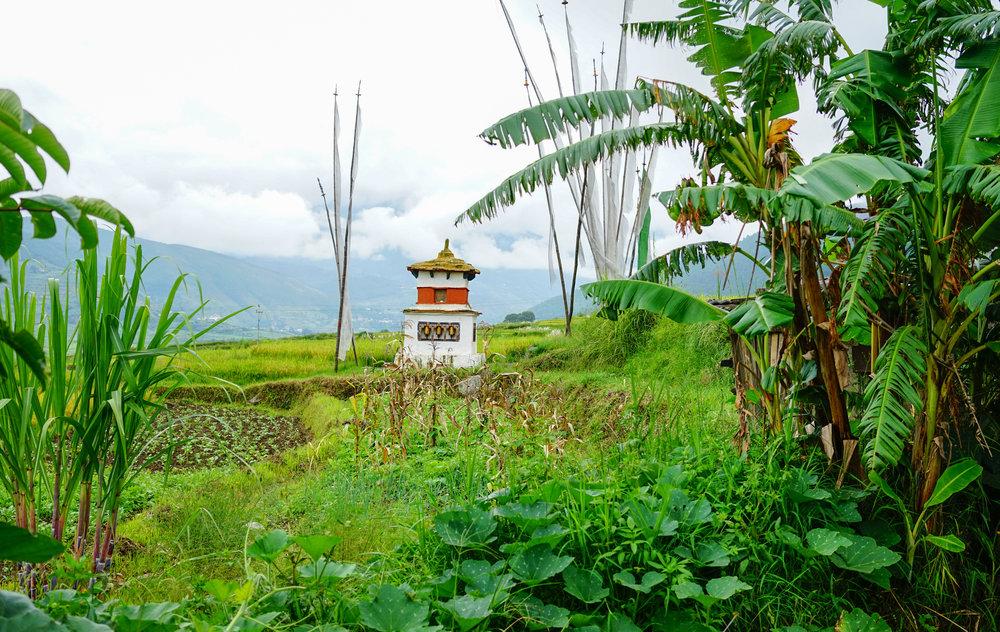 Buddist-tempel i bhutan