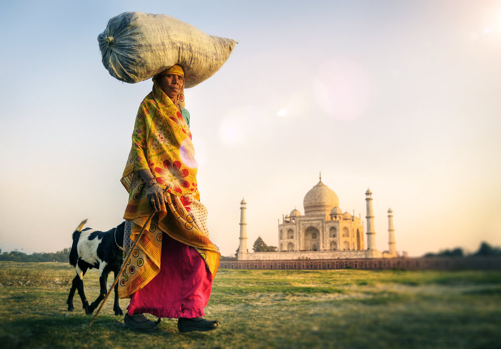 Opplev Indias mange nyanser; Goa, Kerala, Agra, tigersafari, Palace on Wheels... og mye mer