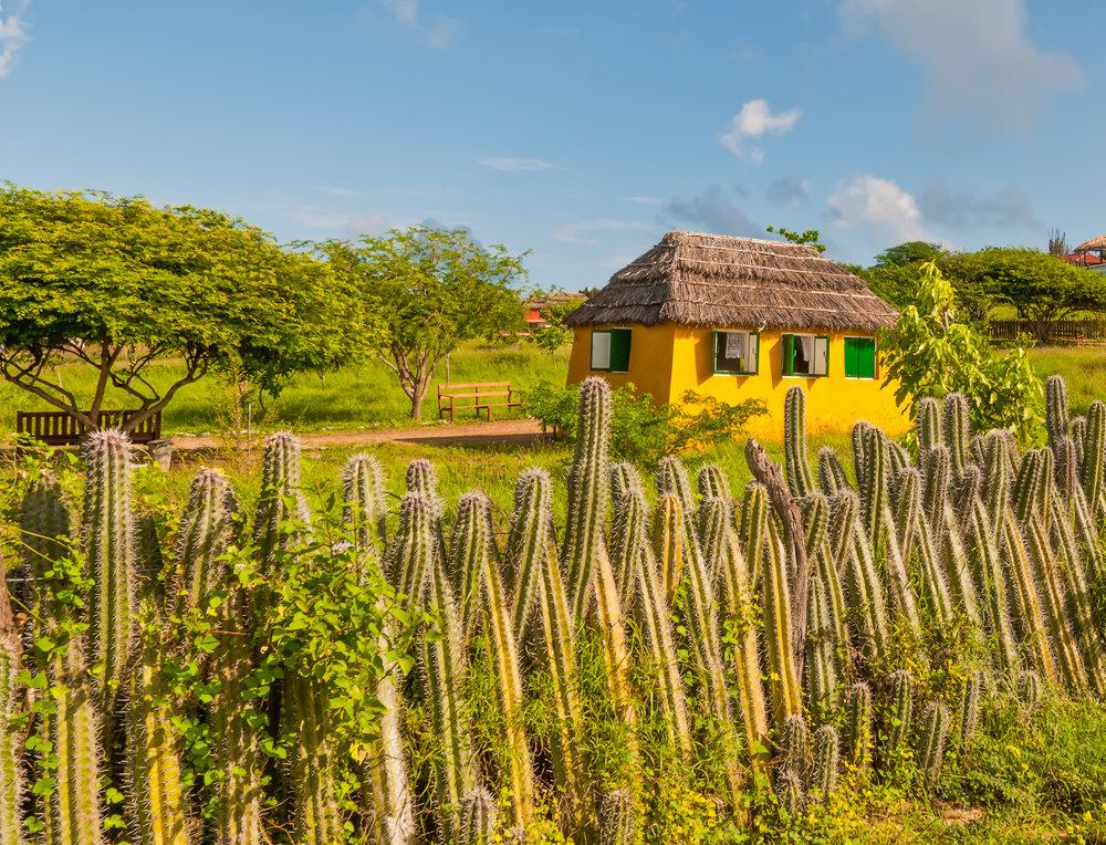 Bonaire representerer mye av det vi drømmer om i Karibien. Øya er også et eldorado for deg med sans for vannsport