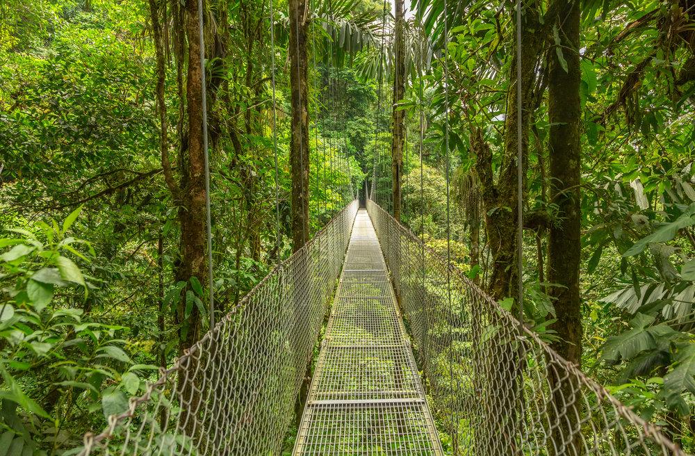 Costa Ricas strender smyger seg langs både Stillehavet og det karibiske hav. Landet er vakkert, frodig og eksotisk.