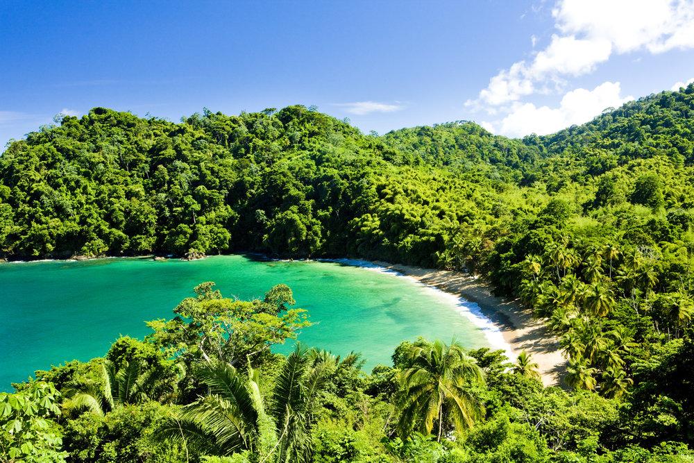 Tobago er øya for deg som setter pris på det autentiske og uberørte. Det er som å være på strandferie i Edens hage.