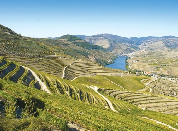 Nordberg vinklubb til Douro og Porto oppdatert program_Page_2_Image_0003.jpg