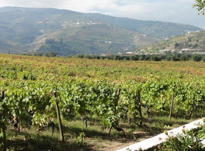 Nordberg vinklubb til Douro og Porto oppdatert program_Page_2_Image_0004.jpg