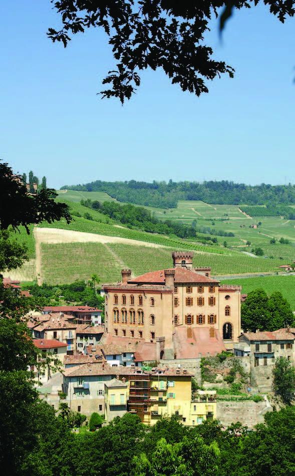 Nordberg vinklubb Piemonte_Page_1_Image_0002.jpg