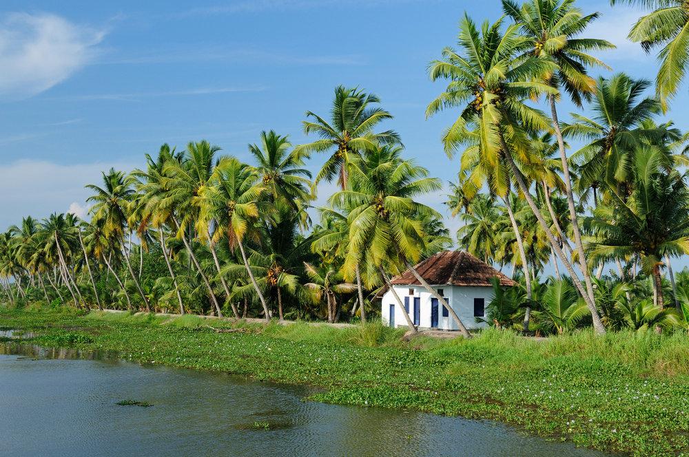 bigstock-India-Kerala-Canal-7980432.jpg