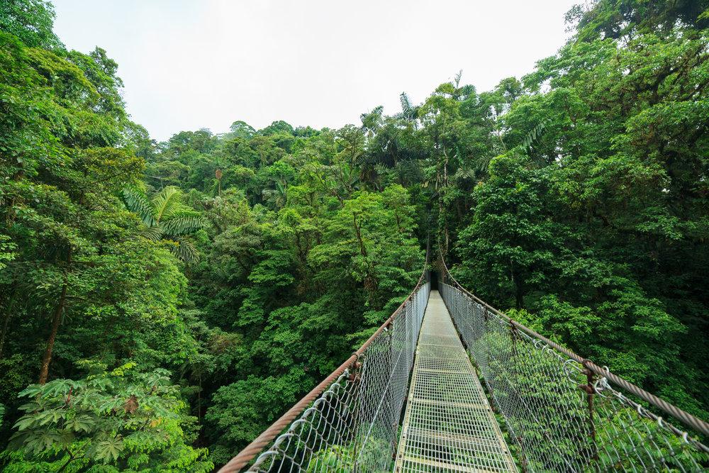 costarica_monteverde_bigstock--212601442.jpg