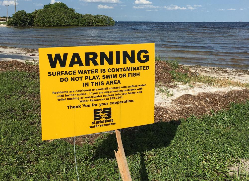 "October 2018:   St. Pete Settles Clean Water Act Lawsuit Over Sewage Releases   St. Petersburg leaders have settled a lawsuit filed by environmental groups in 2016 after the city released millions of gallons of sewage into Tampa Bay.  Under the settlement, the city committed to inspections and improvements to its sewage system. The measures go beyond what was required by a consent order that the Department of Environmental Protection issued in response to the release of up to 200 million gallons of sewage during storms in 2015 and 2016.  ""We felt that the consent order that the city entered into with DEP was not going to be adequate to fix the problem,"" said Justin Bloom, executive director of Suncoast Waterkeeper. ""It lacked adequate investment, investigation and a plan to really fix the infrastructure.""  Suncoast Waterkeeper sued the city under the Federal Clean Water Act. The Ecological Rights Foundation and Our Children's Earth joined the group in filing the lawsuit.  The settlement has federal oversight and if the city fails to follow the terms, the environmental groups could take it back to court.   Read more here."