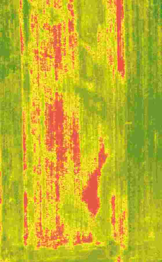 Crop Damage (NDVI)