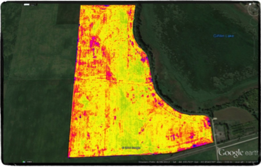 Late Season Stress Map (NDVI)