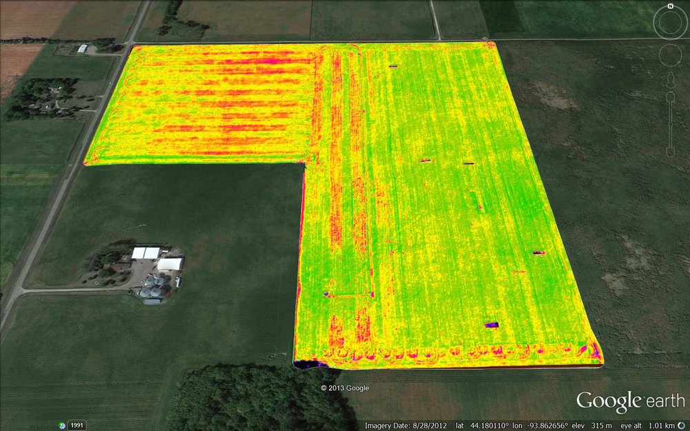 Hybrid Performance after Planting (NDVI)