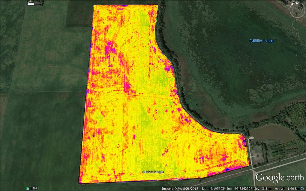 Hybrid Performance mid-season (NDVI)