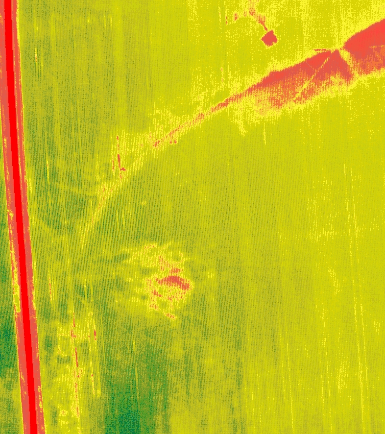 Quantitative Damage Assessment (NDVI)