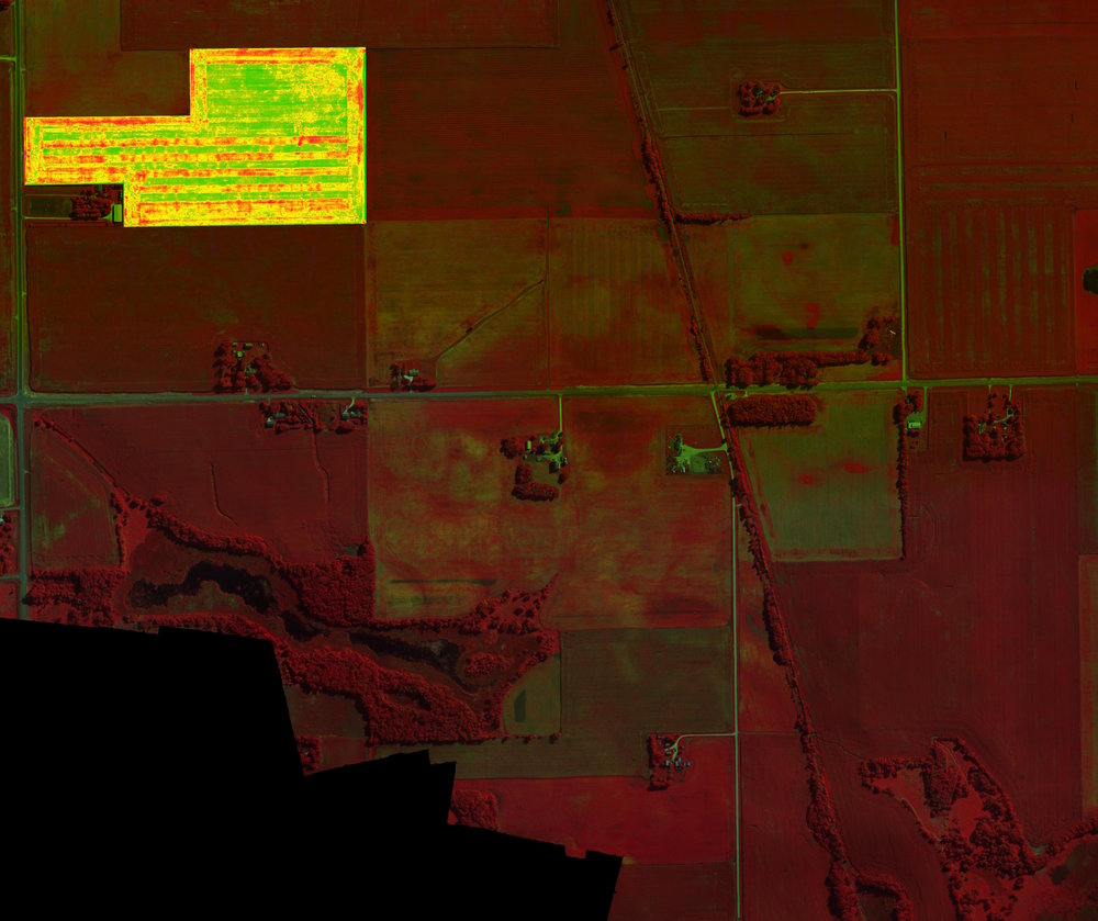 Local Area CIR with NDVI Overlay