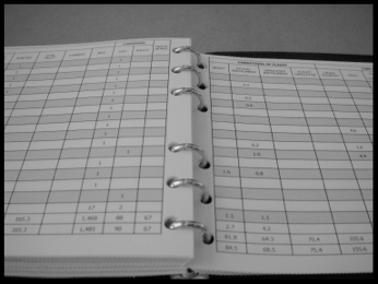 Figure 1. Printed electronic logbook page