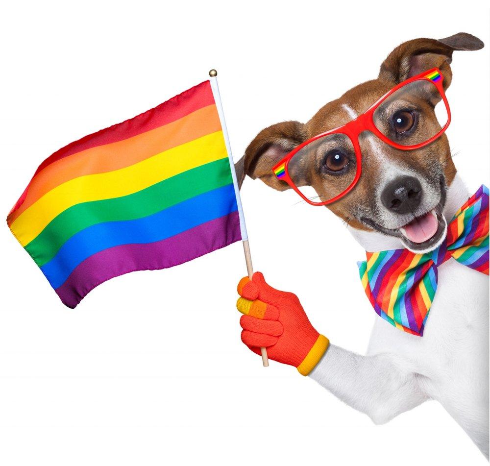 Gay Social Group Mascot