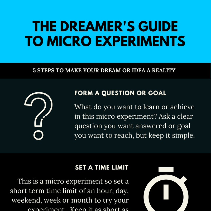The Dreamer's Guideto micro experiments.png