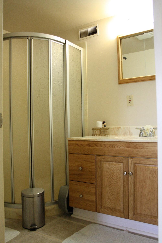 12. Lower Bathroom (5).JPG