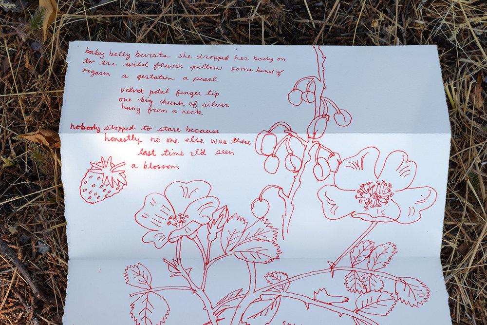 Letter_20.jpg