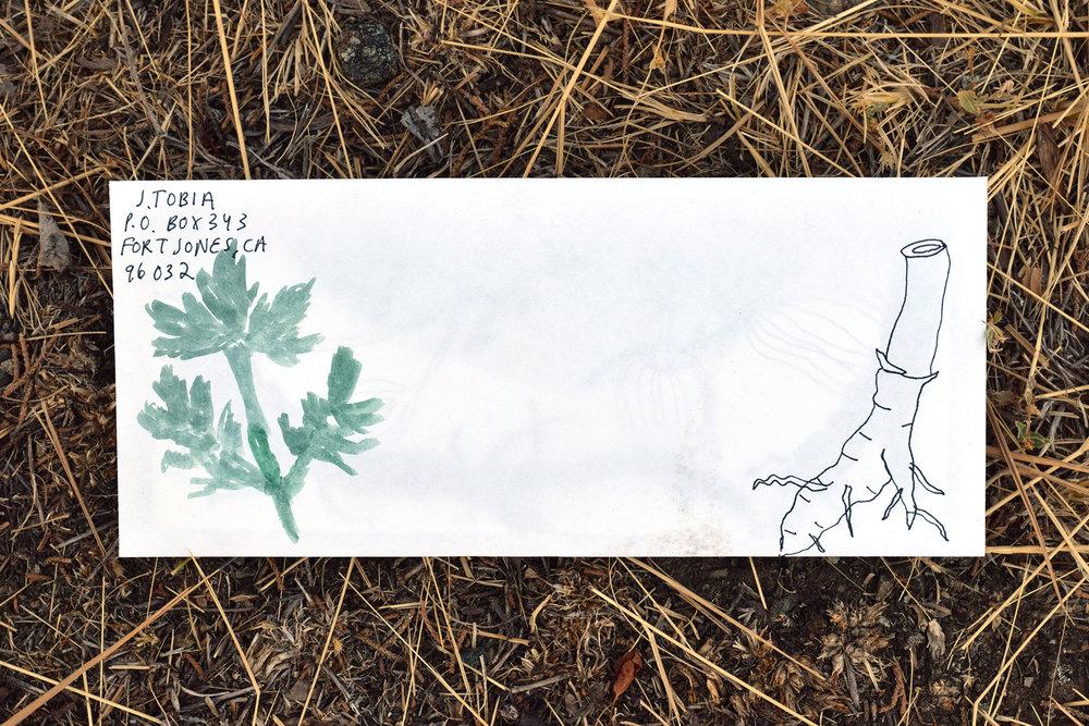 Letter_14.jpg