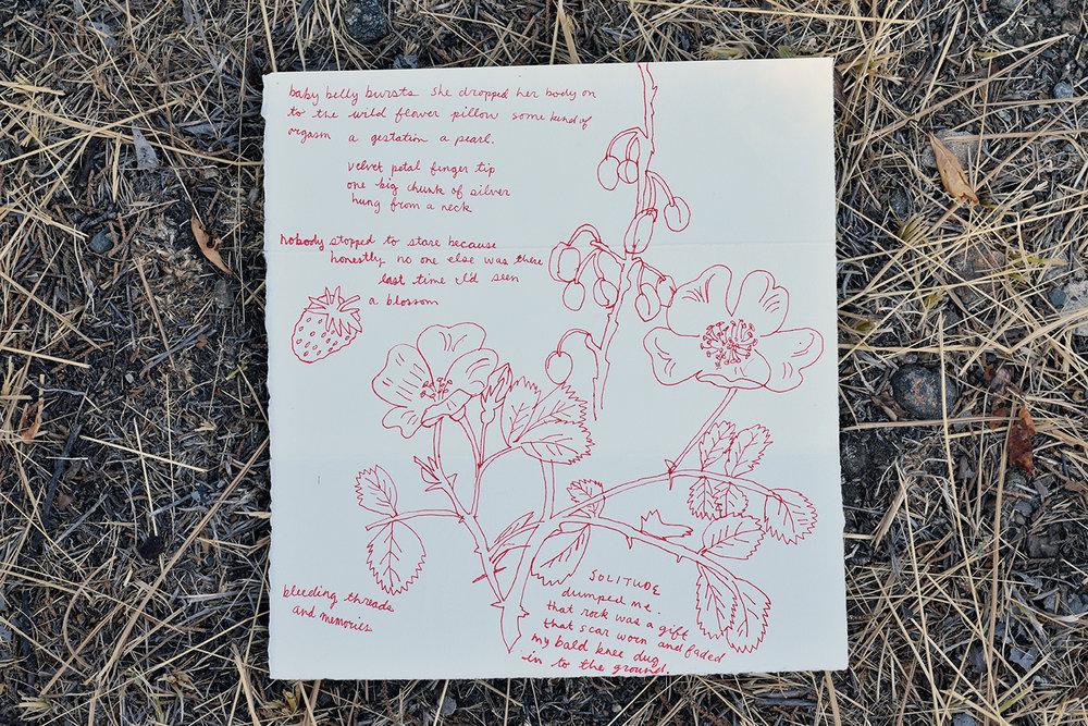 roseletter.jpg