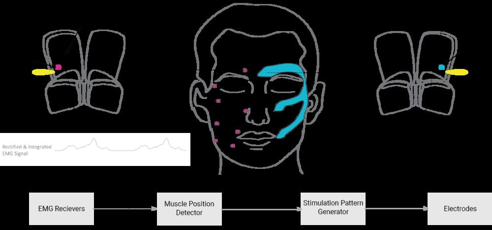 Functional Diagram.png