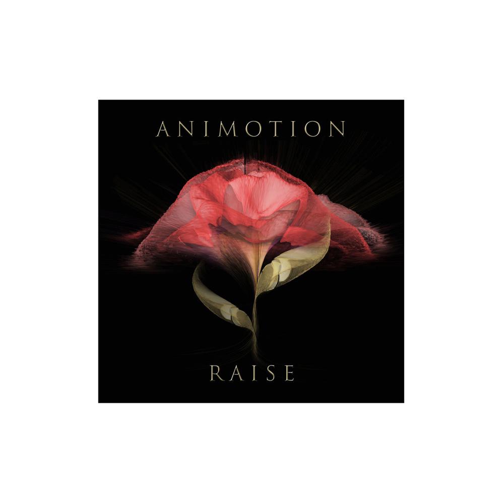 animotion.jpg