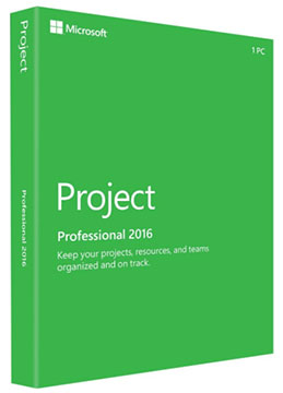 Best Microsoft Project Training Workshop