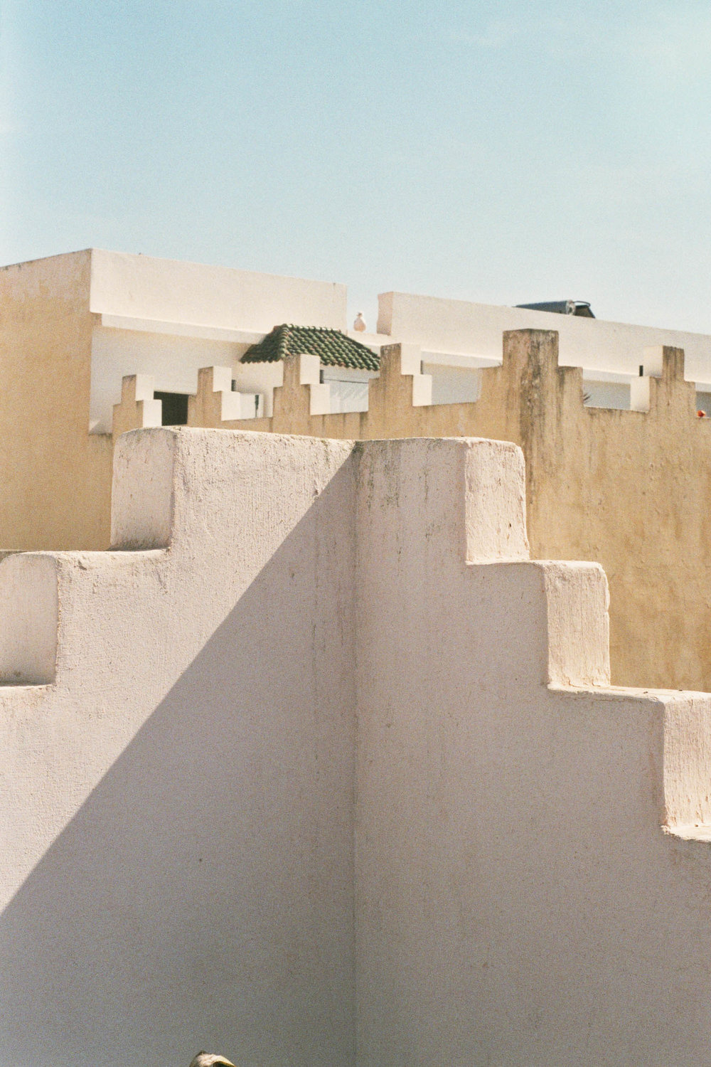 FVF_Morocco_Website-5.jpg