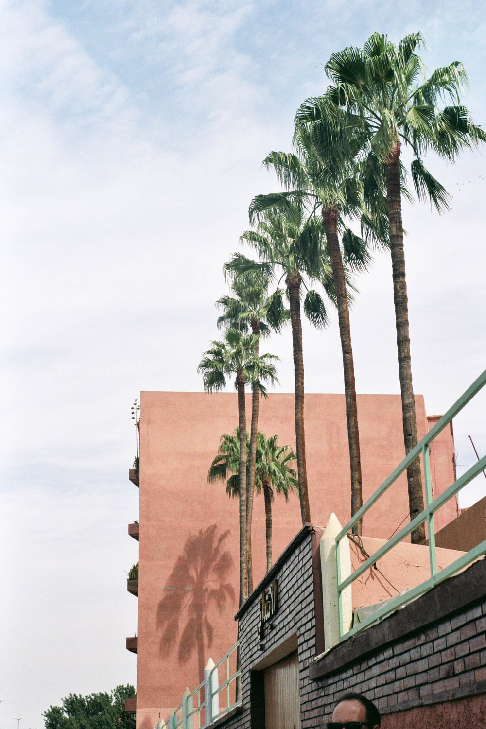 FVF_Morocco_Website-8.jpg