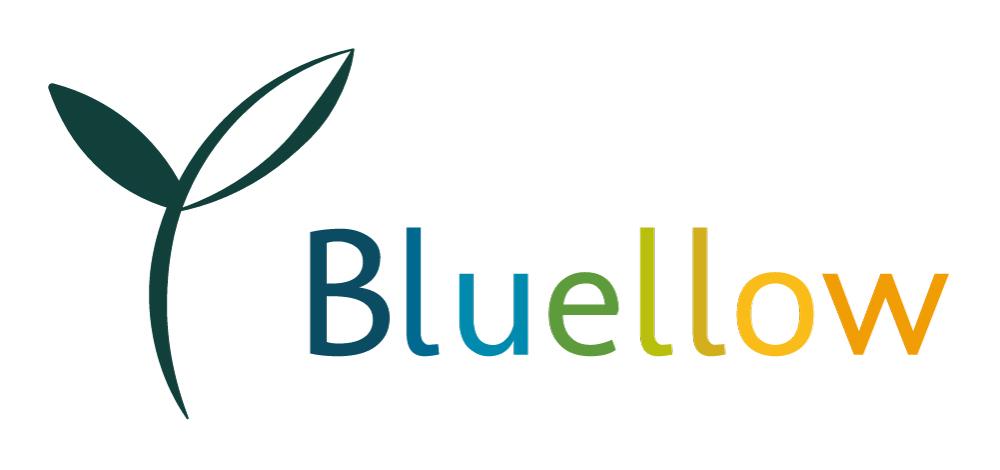 logo-Bluellow02.jpg