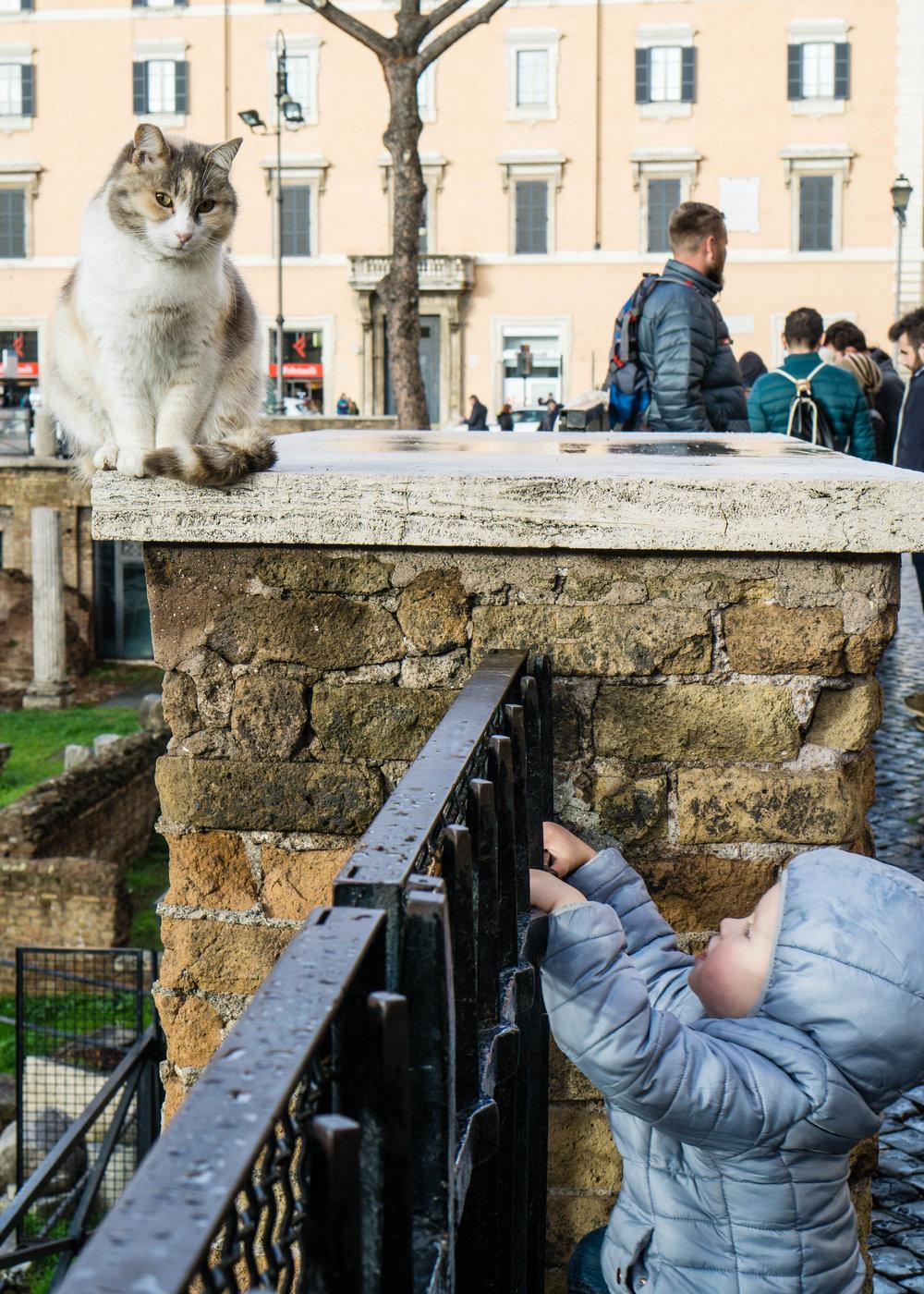 Kid & cat, Rome