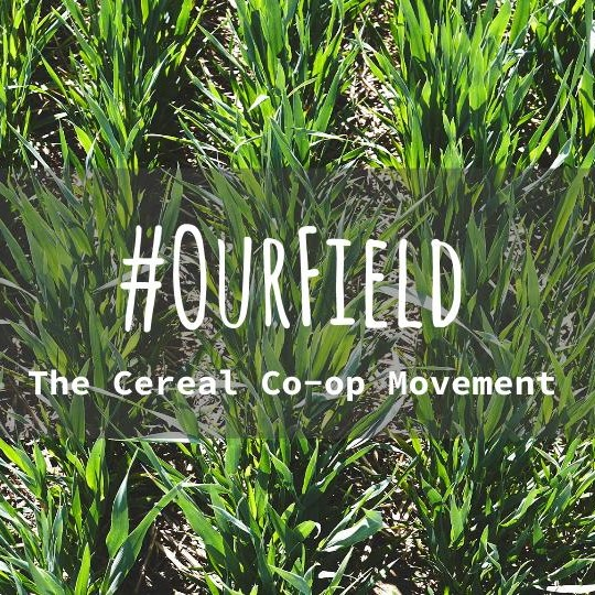 #OurField - The Cereal Co-op Movement picture (2).jpg