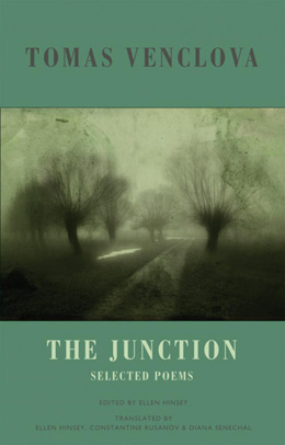 The_Junction_Cover.jpg