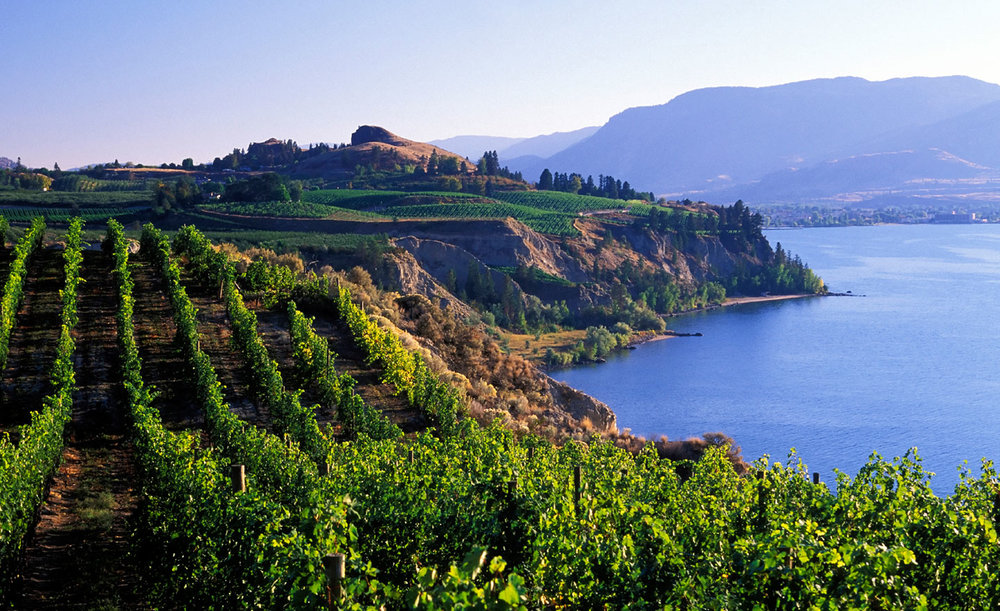 BW-Kelowna-Hotel-Wine-Tour-Packages.jpg