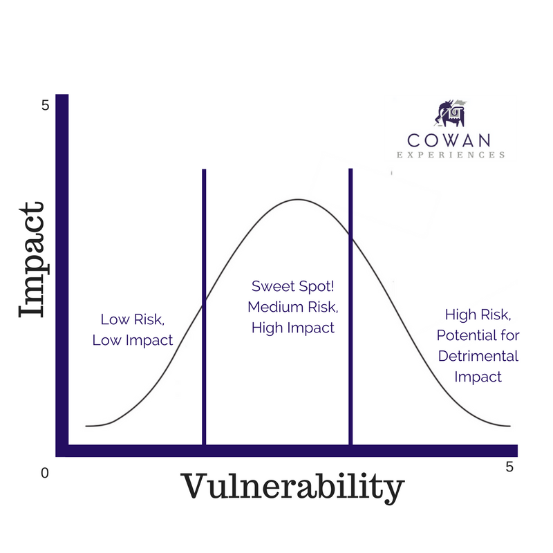 Vulnerability Scale 2 (1).png