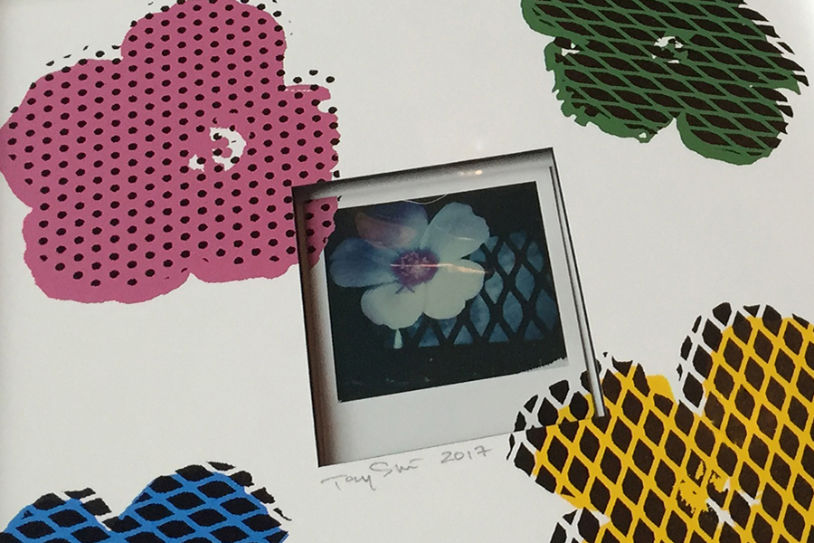 Small Artworks & Prints