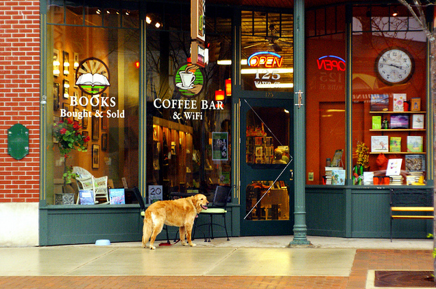 Boyne City Book Store and a Happy Dog.png