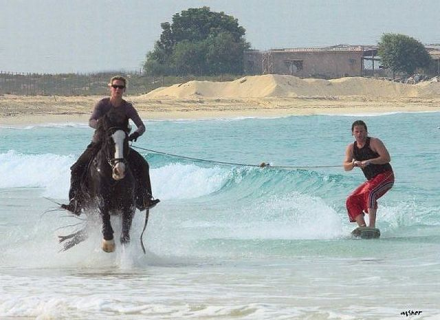 horseback-waterskiing-horse-beach-epic-13576103000.jpg