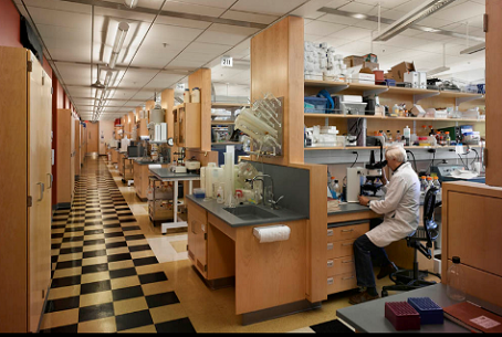MCC Laboratories