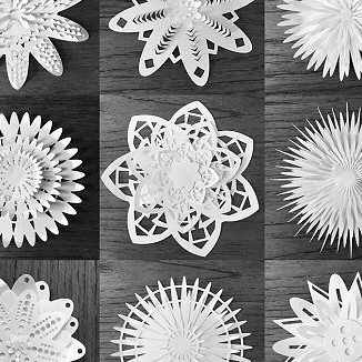 Svg cut 3D flowers. These would look great on greeting cards, next to a gift tag on a present, wedding stationary and much more. Make them pop with contrasting colours and materials. #svgfiles #svgcuts #svgcuttingfiles #silhouettecameo #cricut #cricutexplore #creativemarket #thehungryjpeg #digitalart #digitalsupplies #3dflowers