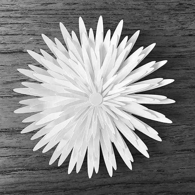 Love these 3D flowers. Such a simple design but very effective. Thus style of flower can be done with any svg flower shape. Simple copy and paste the flower in your editing software and create various sizes to layer either in single or multiple layers. Wouldn't an ombré flower look fantastic with a dark centre and pale base layer #svg #svgcuts #svgcuttingfiles #dxf #dxffiles #silhouettecameo #cricut #cutfiles #paperflowers #papercraft #paperhobby #digitalcutfiles #digitalcutting