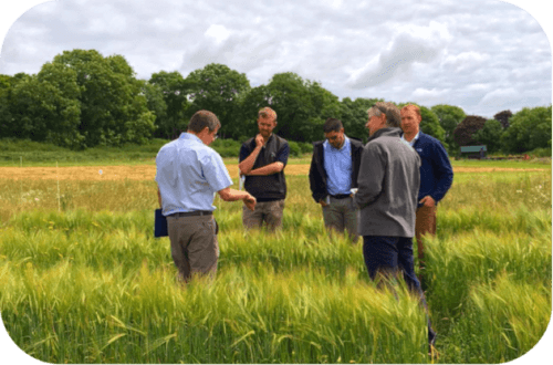 Agronomy advice