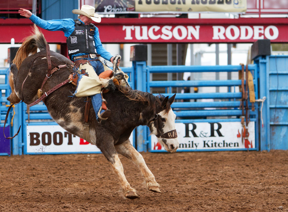 Saddle bronc rider Taos Muncy from Corona, N.M. holds on tight to a bucking horse Saturday, Feb. 18 at the 92nd Annual La Fiesta de los Vaqueros.