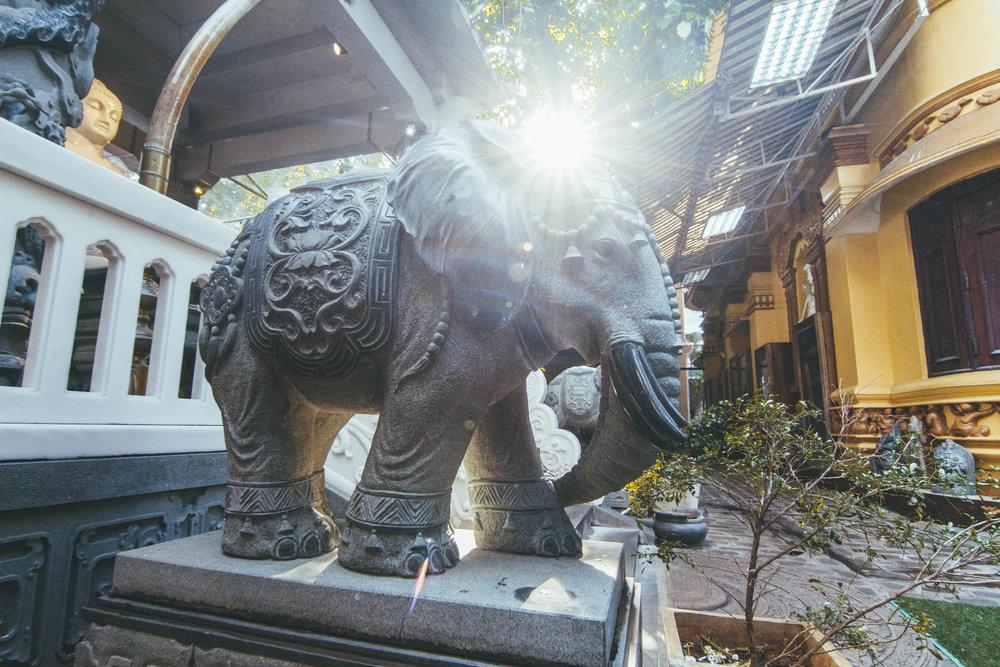 Sri_Lanka_Day1-87.jpg